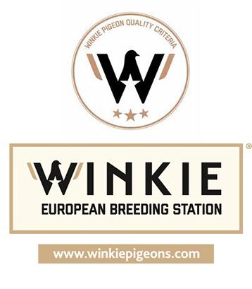 WINKIE1