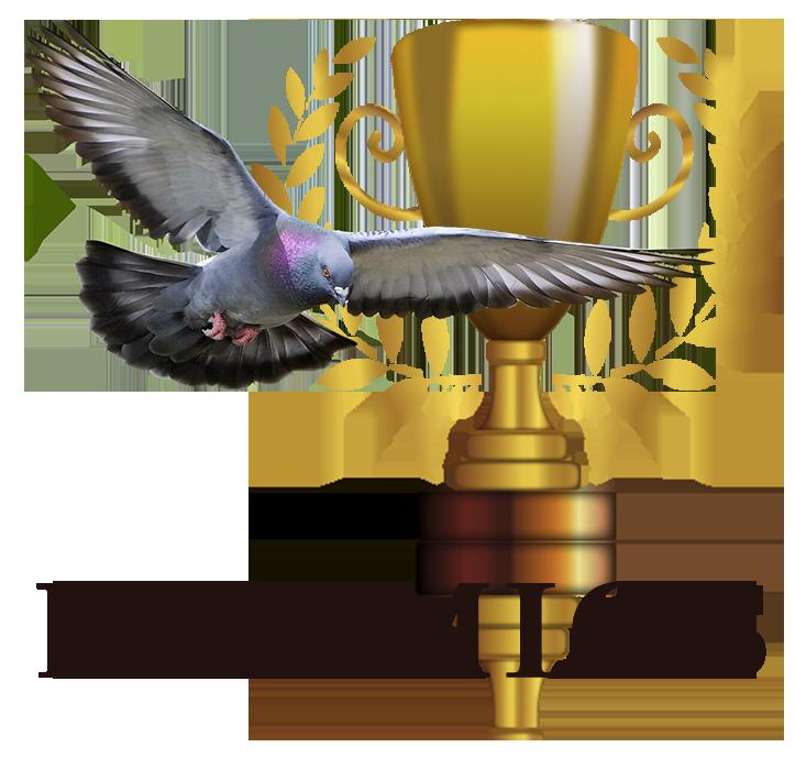 IMG-PREMIOS